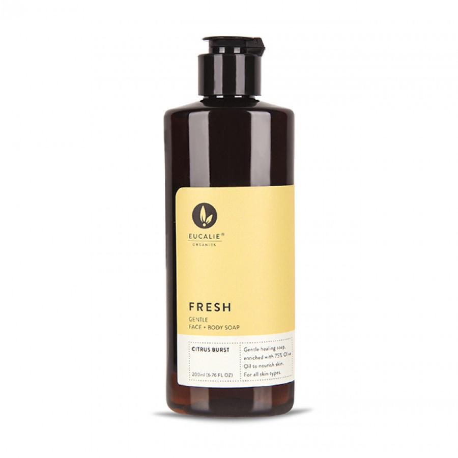 FRESH Healing Liquid Soap