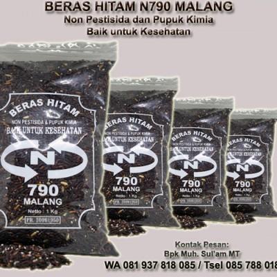 beras-hitam-organik