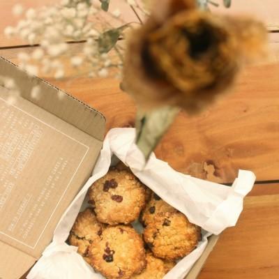 vegan-choco-cran-tahini-cookies