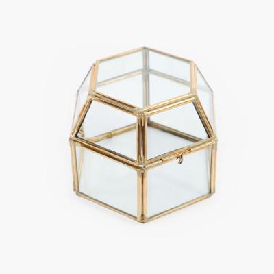 hex-box-terrarium-d12