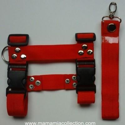 harness-h-bisban
