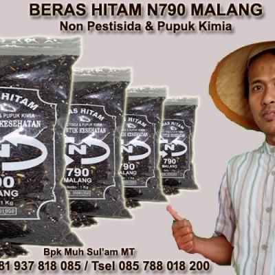 beras-hitam-organik-n790-malang-pecah-kulit-kemasan-1-kg-bersih-bebas-pestisida-dan-pupuk-kimia-baik-untuk-diabetes-diet-bayi-ibu-hamil-dan-menyusui