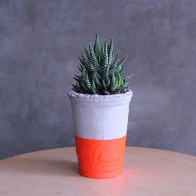 pot-gelas-oranye
