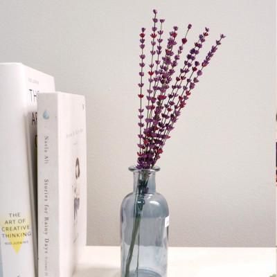 paper-lavender-lavender-kertas